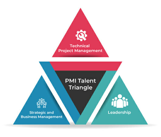 Project Manager - PMI Talent Triangle